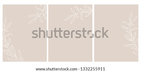 3 olive twigs vector