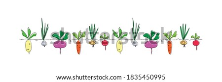 Сolorful vector vegetables in one continuous line drawing style, repeating group of elements: beet, carrot, radish, turnip, onion, garlic. Design farmer market, ecofood, diet menu. Сan be repeated.