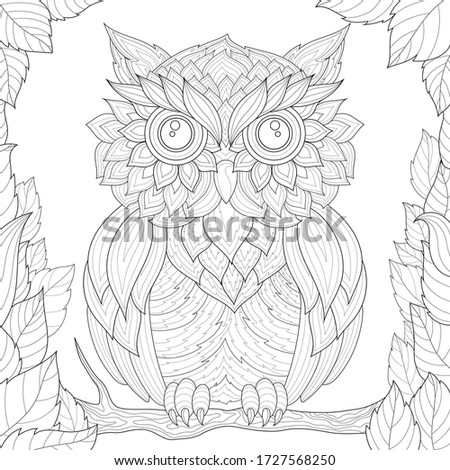owl sits on a branch  and