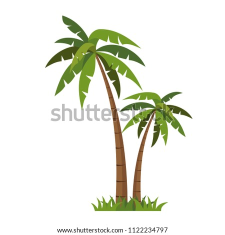 Palms tree  icons vector.