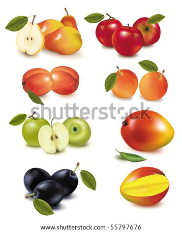Photo-realistic vector illustration. Big group of ripe fruit.