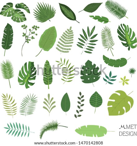 32 pieces tropical leaf vectors