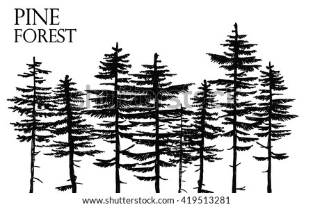 Free Pine Tree Vektor Kostenlose Vektor Kunst Archiv Grafiken