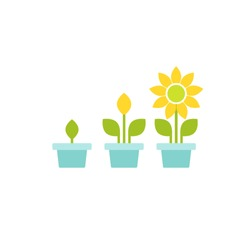 3 plant in pots with green leaves and flower. Growing process vector flat icon. Income, money growth, investment metaphor. Isolated on white. Harvest, product, offspring.