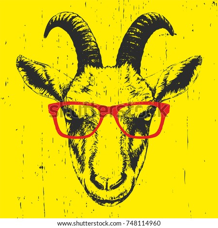 portrait of goat with glasses