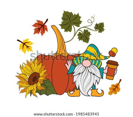 pumpkin  sunflower  autumn
