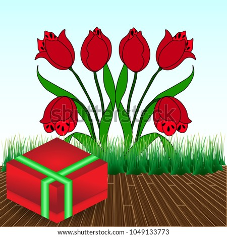 6 red tulips with gift box