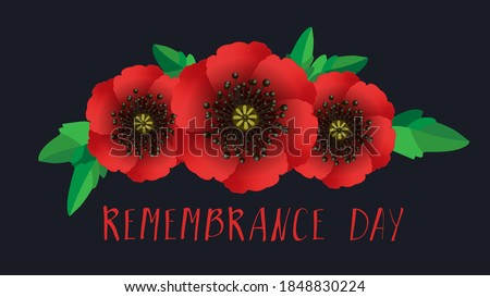 Remembrance day lest we forget. Red poppy flower international symbol of peace on black background. Great for design posters, banner, header for website. Remembrance Day vector illustration