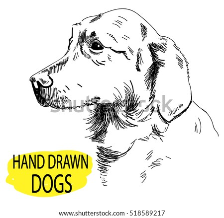 free hand drawing dog head vector download free vector art stock