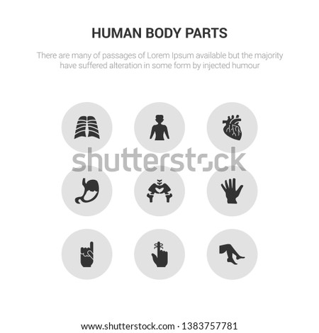 9 round vector icons such as foot side view, hand finger with a ribbon, hand gesture raising the index finger, hand showing palm, hip bone contains human abdomen, human artery, human body standing