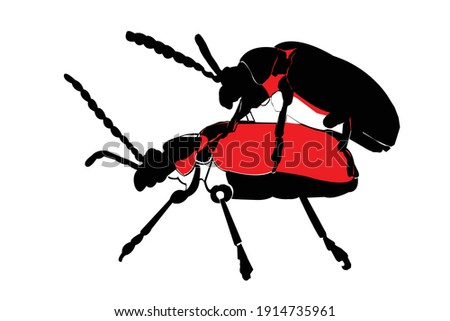 scarlet beetle in a