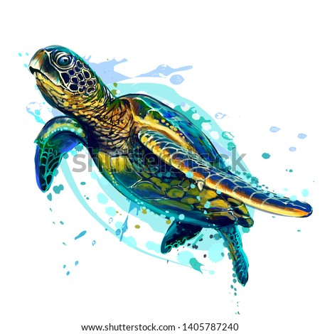 sea turtle realistic