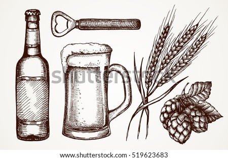 Set of beer objects. Hand drawing set of vector sketches.