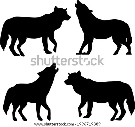 set of black and white wolf