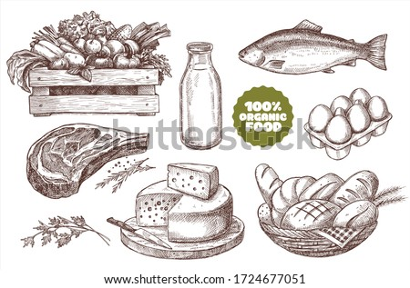 Set of illustrations of farm products. Natural products: meat, cheese, bread, milk, eggs, fish, vegetables. Vintage design.