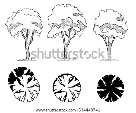set of treetop symbols for architectural or landscape design different hand drawn trees isolated - Architecture Drawing Of Trees