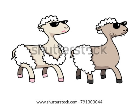2 sheep in summer time