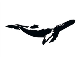 Silhouette of a whale Isolated on a white background in vector