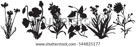 silhouette of plants and