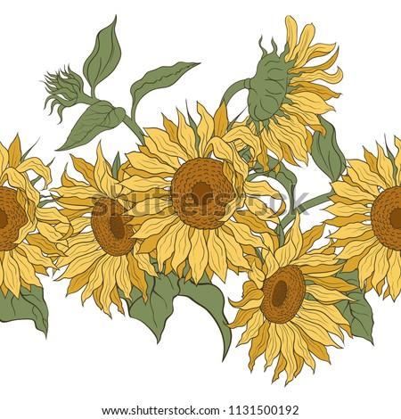 sunflowers vector horizontal
