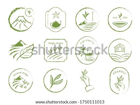 tea element brush style with tea leaf,tea field,fuji mountain,tea cup and room.