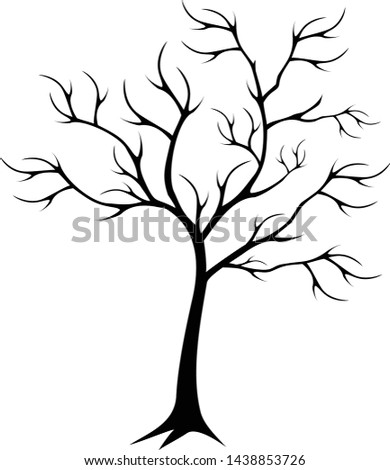 the silhouette of a tree that
