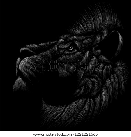 The Vector logo lion for T-shirt design or outwear.  Hunting style lion cat background.