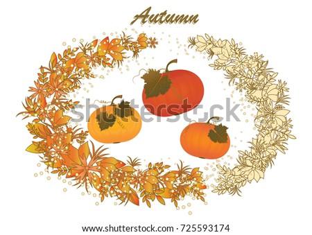 three beautiful pumpkins