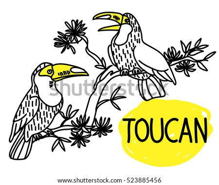 toucans birds sitting on a