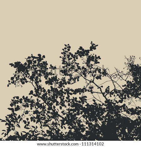 tree and branches silhouette. detailed vector illustration