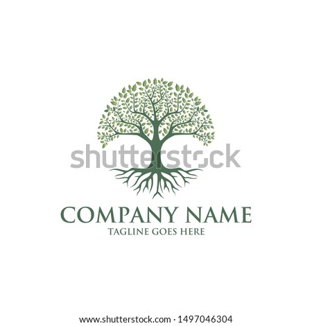 Tree of life logo design inspiration isolated on white background