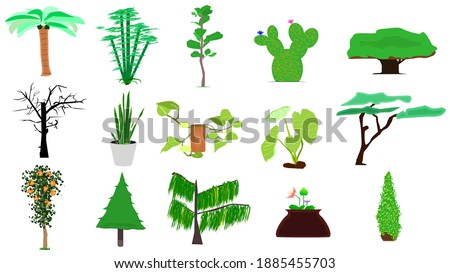 15 tree vectors for