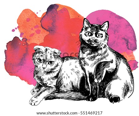 two cats are sitting side by