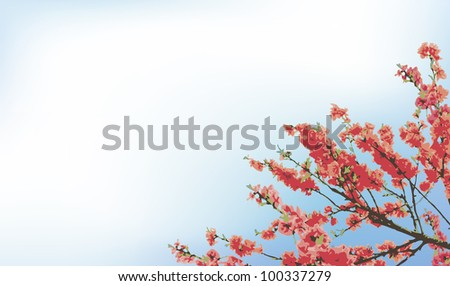 Vector background with spring flowering cherry tree branches against a blue sky
