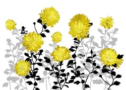Vector composition with yellow asters and leaves on stems.Hand drawn illustration.Floral background.