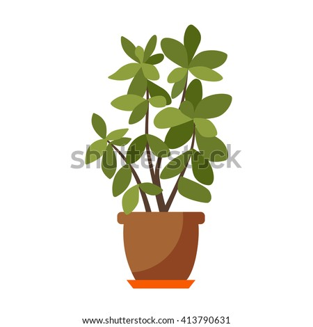 vector flat house plant pot