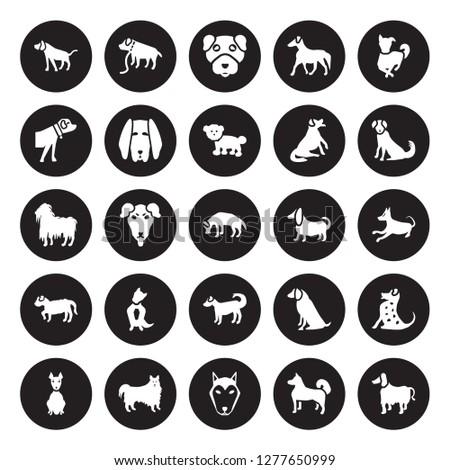 25 vector icon set   bracco