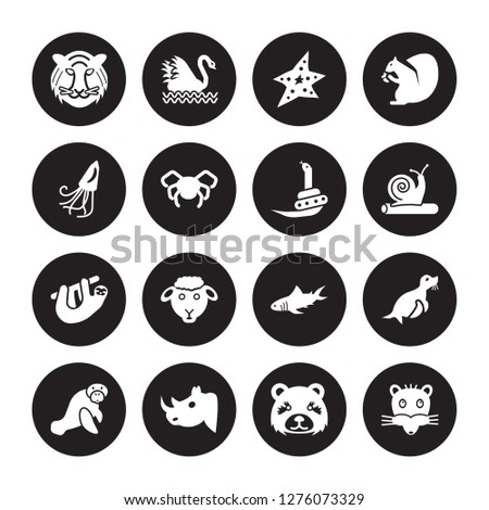 16 vector icon set : Tiger, panda, Rhino, Sea cow, Seal, Rat, Squid, Sloth, Snake isolated on black background