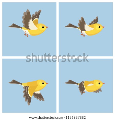 Vector illustration of cartoon flying American Goldfinch (female) sprite sheet. Can be used for GIF animation