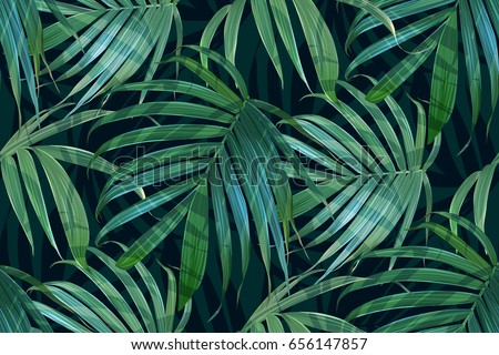 vector palm frond tropical