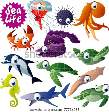 12 vector sea animals
