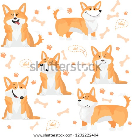 Vector seamless pattern of cute welsh corgi dogs in different emotions. On the white background.