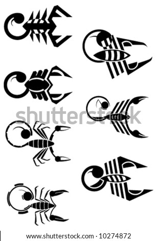 7 vector signs of scorpion