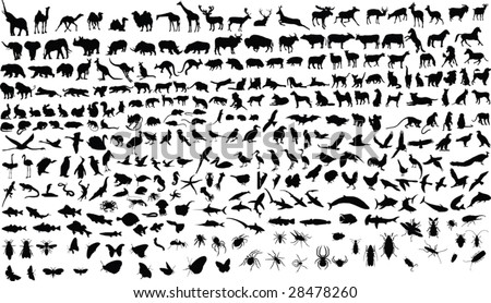 300 vector silhouettes of