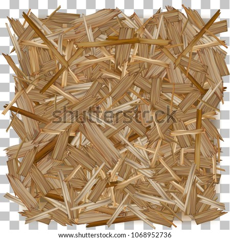vector wood pressed wooden