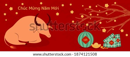 2021 Vietnamese New Year Tet illustration, buffalo, rice cakes, watermelon, gold, apricot flowers, Vietnamese text Happy New Year. Hand drawn vector. Flat style design. Concept card, poster, banner.