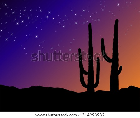 view of two cactus with sunset