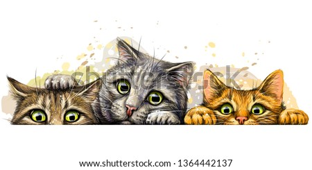 Wall sticker. Graphic, colored hand-drawn sketch with splashes of watercolor depicting three cute cats on a horizontal surface. #1364442137