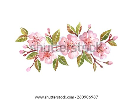 watercolor cherry branch with