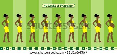 40 weeks of pregnancy stages